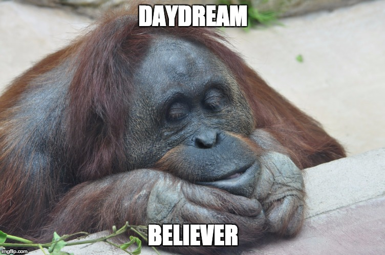 DAYDREAM BELIEVER | image tagged in chillin' | made w/ Imgflip meme maker