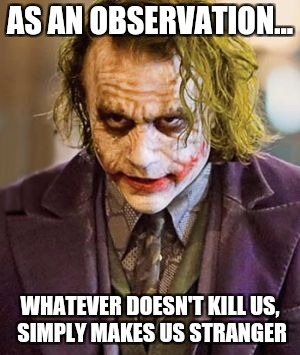 What doesn't kill us | AS AN OBSERVATION... WHATEVER DOESN'T KILL US, SIMPLY MAKES US STRANGER | image tagged in the joker,memes,stranger,real life,simple | made w/ Imgflip meme maker