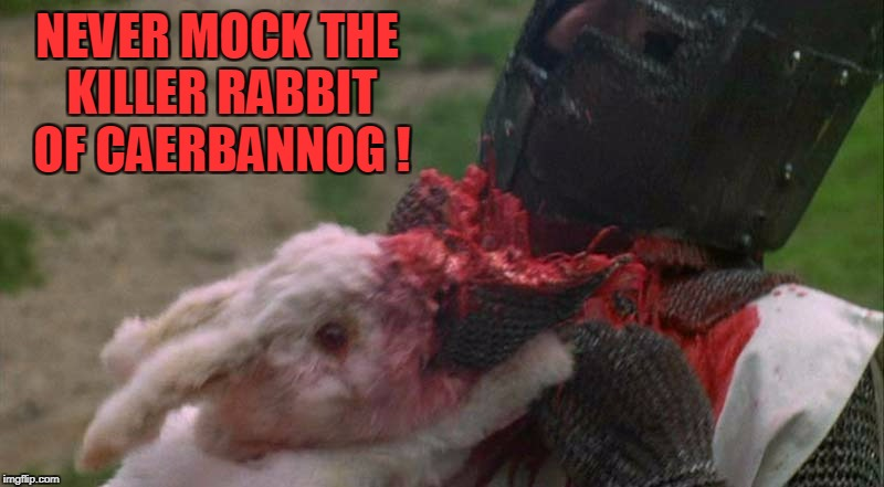NEVER MOCK THE KILLER RABBIT OF CAERBANNOG ! | made w/ Imgflip meme maker