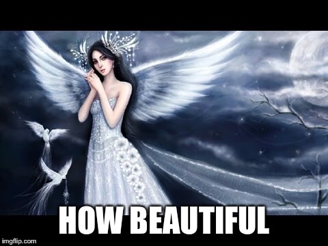 HOW BEAUTIFUL | made w/ Imgflip meme maker