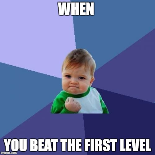 Success Kid Meme | WHEN YOU BEAT THE FIRST LEVEL | image tagged in memes,success kid | made w/ Imgflip meme maker