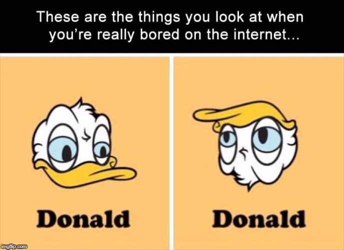 mind blown | image tagged in meme,funny,donald trump,donald duck | made w/ Imgflip meme maker