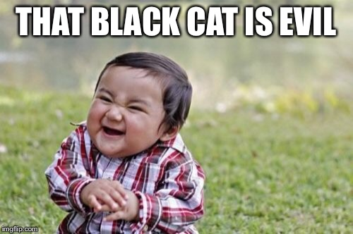 Evil Toddler Meme | THAT BLACK CAT IS EVIL | image tagged in memes,evil toddler | made w/ Imgflip meme maker