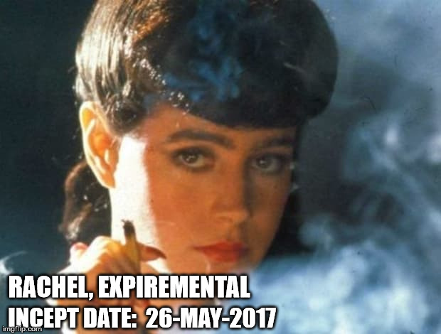 Rachel Tyrell | RACHEL, EXPIREMENTAL INCEPT DATE:  26-MAY-2017 | image tagged in blade runner | made w/ Imgflip meme maker