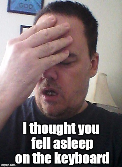 face palm | I thought you fell asleep on the keyboard | image tagged in face palm | made w/ Imgflip meme maker