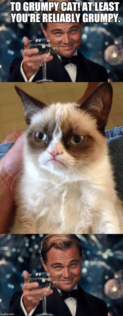 ONE RELIABLE GRUMP! :D | TO GRUMPY CAT! AT LEAST YOU'RE RELIABLY GRUMPY. | image tagged in funny,memes,cats,animals,grumpy cat,leonardo dicaprio cheers | made w/ Imgflip meme maker