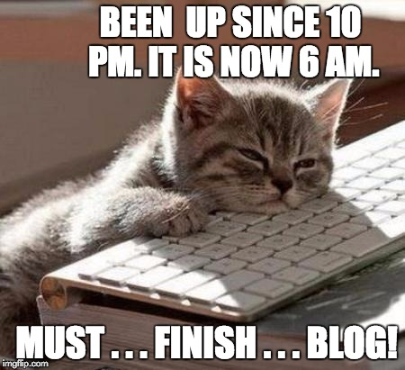 tired cat | BEEN  UP SINCE 10 PM. IT IS NOW 6 AM. MUST . . . FINISH . . . BLOG! | image tagged in tired cat | made w/ Imgflip meme maker