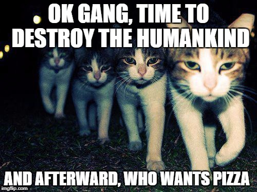 Bad Cats | OK GANG, TIME TO DESTROY THE HUMANKIND AND AFTERWARD, WHO WANTS PIZZA | image tagged in memes,wrong neighboorhood cats | made w/ Imgflip meme maker