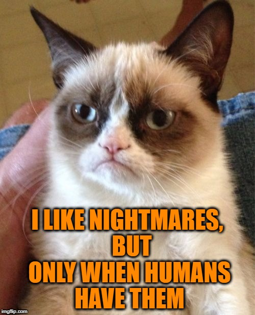 Grumpy Cat Meme | I LIKE NIGHTMARES,  BUT ONLY WHEN HUMANS HAVE THEM | image tagged in memes,grumpy cat | made w/ Imgflip meme maker