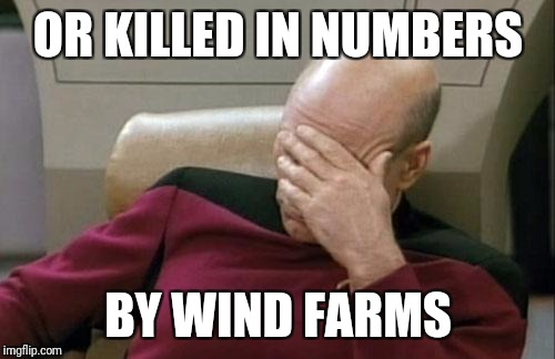 Captain Picard Facepalm Meme | OR KILLED IN NUMBERS BY WIND FARMS | image tagged in memes,captain picard facepalm | made w/ Imgflip meme maker