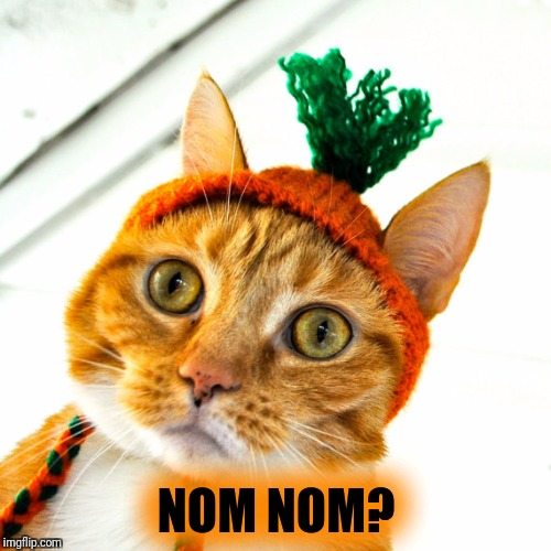 NOM NOM? | made w/ Imgflip meme maker