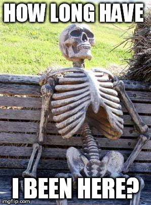 Quite awhile I'd assume | HOW LONG HAVE I BEEN HERE? | image tagged in memes,waiting skeleton | made w/ Imgflip meme maker