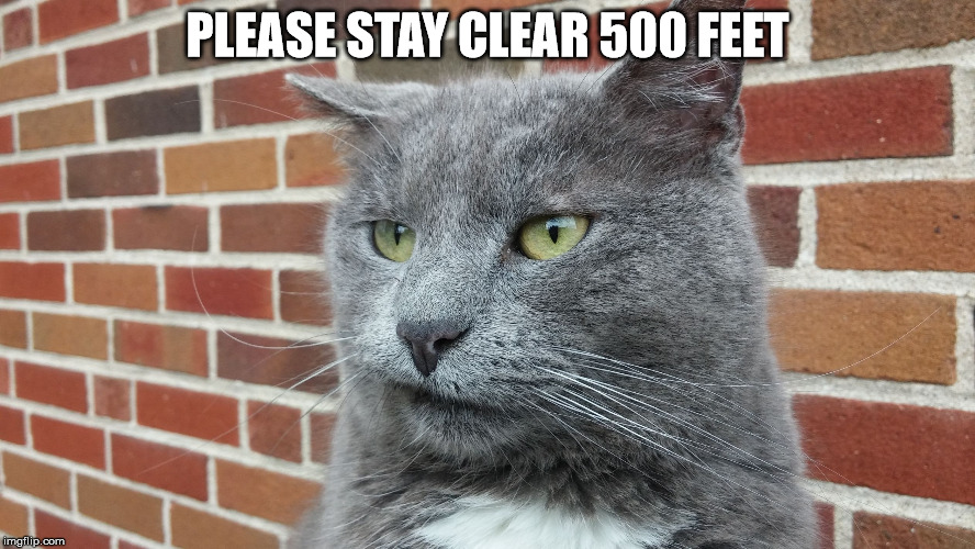 Evil Cat | PLEASE STAY CLEAR 500 FEET | image tagged in evil cat | made w/ Imgflip meme maker