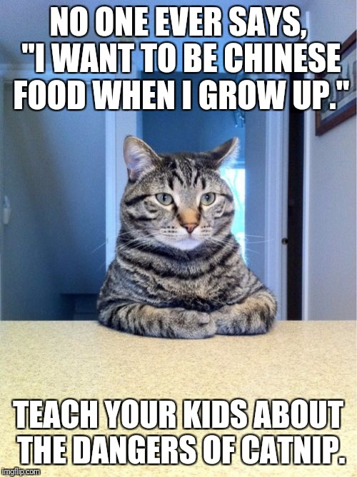 "Take A Seat Cat Meme | NO ONE EVER SAYS, ""I WANT TO BE CHINESE FOOD WHEN I GROW UP."" TEACH YOUR KIDS ABOUT THE DANGERS OF CATNIP. 