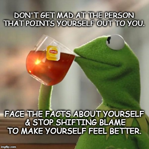But Thats None Of My Business Meme | DON'T GET MAD AT THE PERSON THAT POINTS YOURSELF OUT TO YOU. FACE THE FACTS ABOUT YOURSELF & STOP SHIFTING BLAME TO MAKE YOURSELF FEEL BETTE | image tagged in memes,but thats none of my business,kermit the frog | made w/ Imgflip meme maker