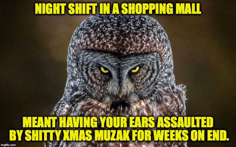 Too Damned Soon!!!! | NIGHT SHIFT IN A SHOPPING MALL MEANT HAVING YOUR EARS ASSAULTED BY SHITTY XMAS MUZAK FOR WEEKS ON END. | image tagged in they should wait till december | made w/ Imgflip meme maker