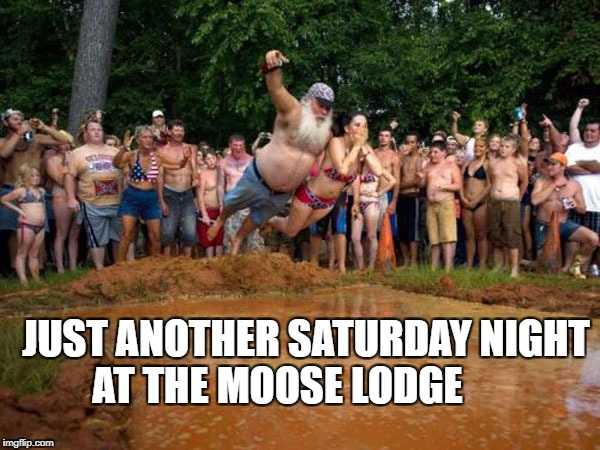 JUST ANOTHER SATURDAY NIGHT AT THE MOOSE LODGE | image tagged in just another day at the moose lodge | made w/ Imgflip meme maker