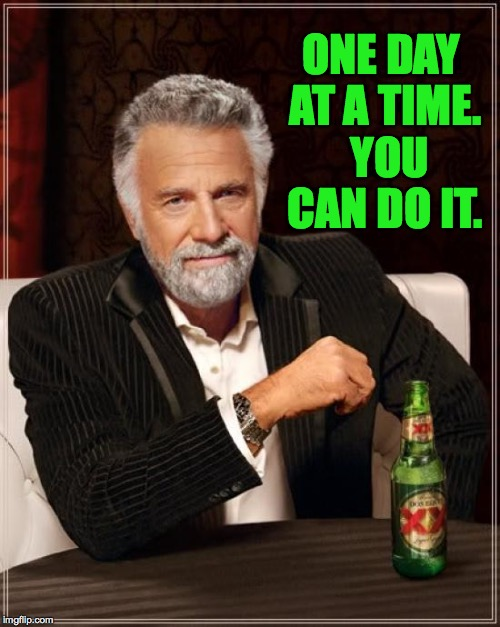 The Most Interesting Man In The World Meme | ONE DAY AT A TIME.  YOU CAN DO IT. | image tagged in memes,the most interesting man in the world | made w/ Imgflip meme maker