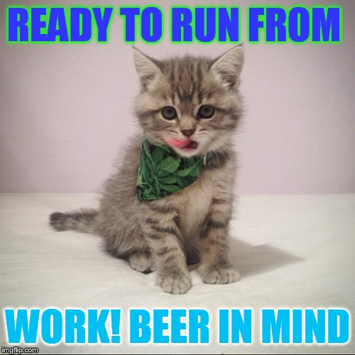 Friday | READY TO RUN FROM WORK! BEER IN MIND | image tagged in memes,cat memes,thank god it's friday,work,run away,beer | made w/ Imgflip meme maker
