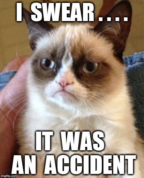 Grumpy Cat Meme | I  SWEAR . . . . IT  WAS  AN  ACCIDENT | image tagged in memes,grumpy cat | made w/ Imgflip meme maker