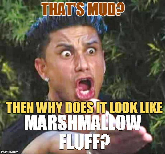 THAT'S MUD? MARSHMALLOW FLUFF? THEN WHY DOES IT LOOK LIKE | made w/ Imgflip meme maker