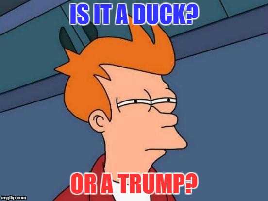 Futurama Fry Meme | IS IT A DUCK? OR A TRUMP? | image tagged in memes,futurama fry | made w/ Imgflip meme maker