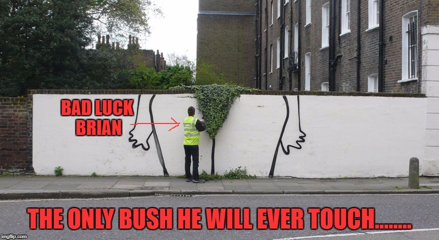 Graffiti Bush | BAD LUCK BRIAN THE ONLY BUSH HE WILL EVER TOUCH........ | image tagged in memes,bad luck brian,bush,graffiti | made w/ Imgflip meme maker