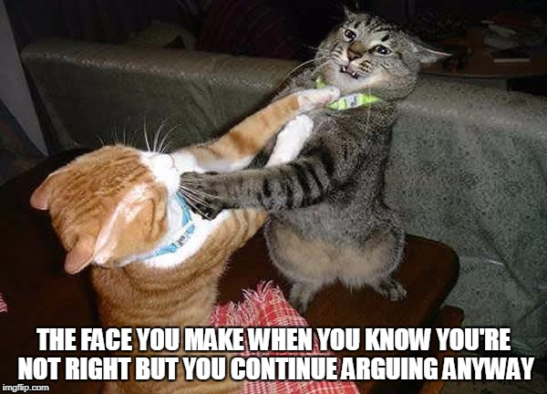 When you realize | THE FACE YOU MAKE WHEN YOU KNOW YOU'RE NOT RIGHT BUT YOU CONTINUE ARGUING ANYWAY | image tagged in two cats fighting for real,argue | made w/ Imgflip meme maker