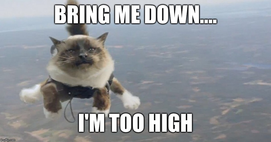 BRING ME DOWN.... I'M TOO HIGH | made w/ Imgflip meme maker