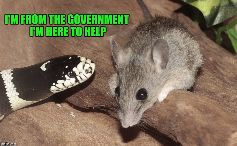 I'M FROM THE GOVERNMENT I'M HERE TO HELP | made w/ Imgflip meme maker