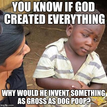 Third World Skeptical Kid Meme | YOU KNOW IF GOD CREATED EVERYTHING WHY WOULD HE INVENT SOMETHING AS GROSS AS DOG POOP? | image tagged in memes,third world skeptical kid | made w/ Imgflip meme maker
