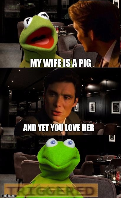 Love sucks | MY WIFE IS A PIG AND YET YOU LOVE HER | image tagged in kermit triggered | made w/ Imgflip meme maker