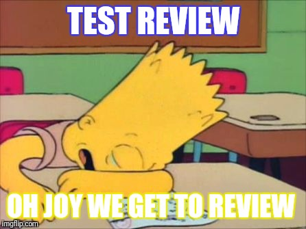 TEST REVIEW OH JOY WE GET TO REVIEW | image tagged in bart test day | made w/ Imgflip meme maker