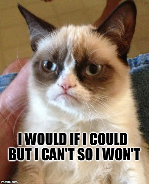 Grumpy Cat Meme | I WOULD IF I COULD BUT I CAN'T SO I WON'T | image tagged in memes,grumpy cat | made w/ Imgflip meme maker