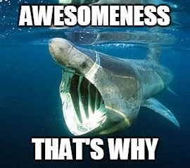 AWESOMENESS THAT'S WHY | made w/ Imgflip meme maker