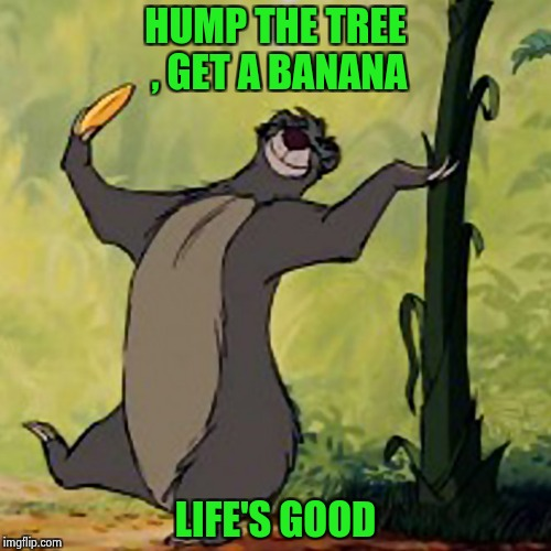 If it was that simple . . . | HUMP THE TREE , GET A BANANA LIFE'S GOOD | image tagged in baloo jungle book,life hack,take it easy | made w/ Imgflip meme maker