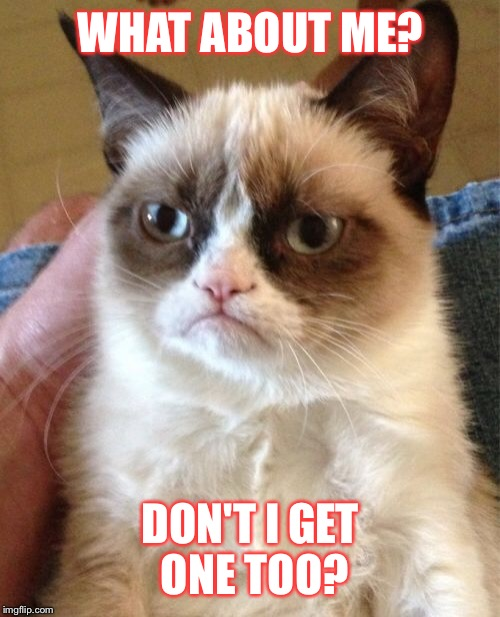 Grumpy Cat Meme | WHAT ABOUT ME? DON'T I GET ONE TOO? | image tagged in memes,grumpy cat | made w/ Imgflip meme maker