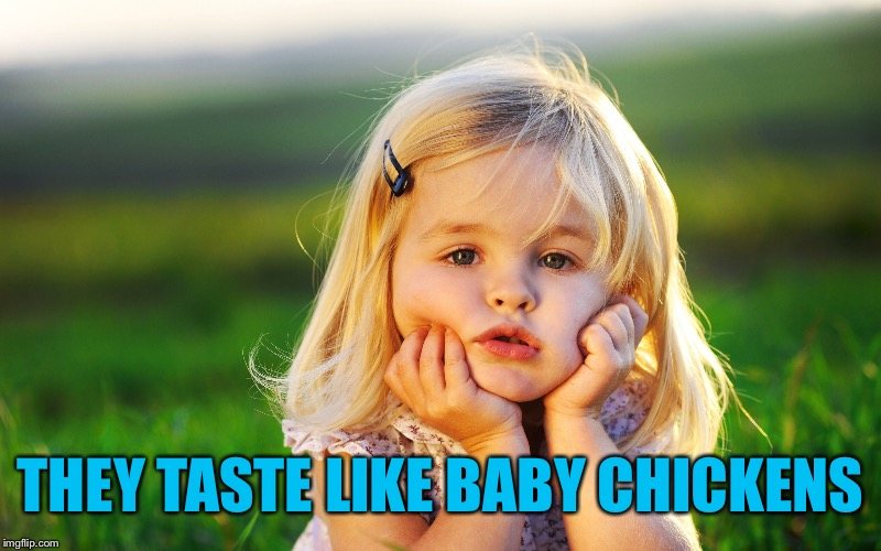 THEY TASTE LIKE BABY CHICKENS | made w/ Imgflip meme maker