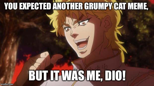 But it was me Dio | YOU EXPECTED ANOTHER GRUMPY CAT MEME, BUT IT WAS ME, DIO! | image tagged in but it was me dio | made w/ Imgflip meme maker