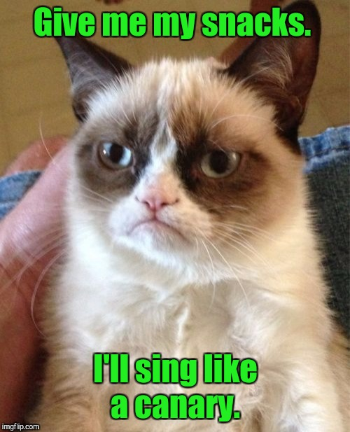 Grumpy Cat Meme | Give me my snacks. I'll sing like a canary. | image tagged in memes,grumpy cat | made w/ Imgflip meme maker