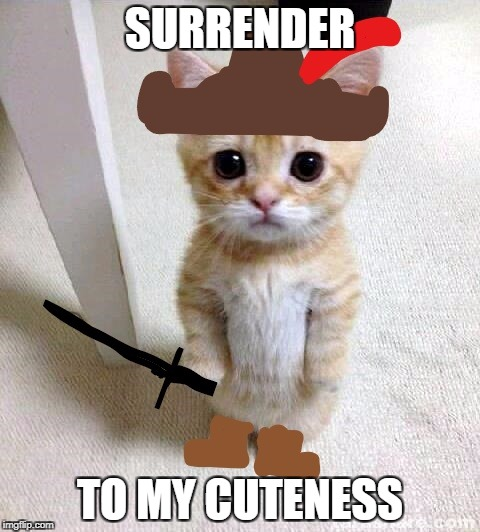 SURRENDER TO MY CUTENESS | image tagged in surrender kitty clean meme | made w/ Imgflip meme maker