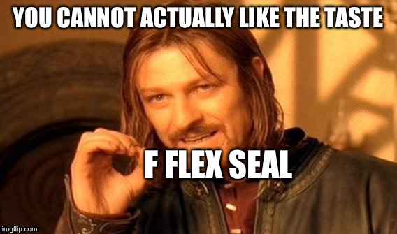 One Does Not Simply Meme | YOU CANNOT ACTUALLY LIKE THE TASTE F FLEX SEAL | image tagged in memes,one does not simply | made w/ Imgflip meme maker