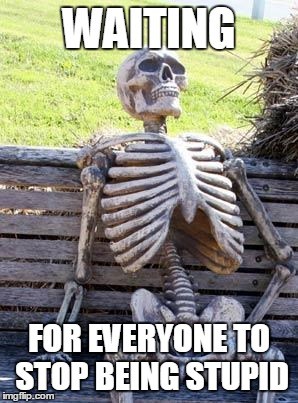 Waiting Skeleton Meme | WAITING FOR EVERYONE TO STOP BEING STUPID | image tagged in memes,waiting skeleton | made w/ Imgflip meme maker