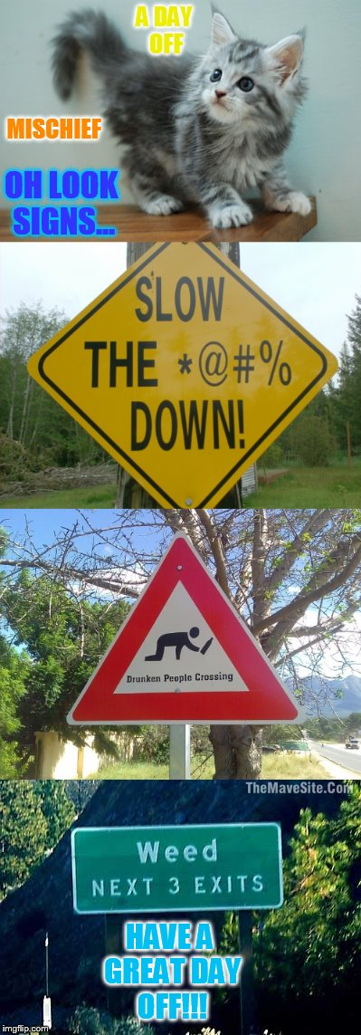 Weekend | A DAY OFF OH LOOK SIGNS... MISCHIEF HAVE A GREAT DAY OFF!!! | image tagged in memes,cat memes,mischief,funny signs,have a nice day,off | made w/ Imgflip meme maker