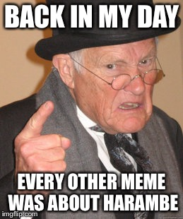 Back In My Day Meme | BACK IN MY DAY EVERY OTHER MEME WAS ABOUT HARAMBE | image tagged in memes,back in my day | made w/ Imgflip meme maker