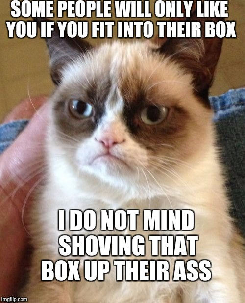 Grumpy Cat Meme | SOME PEOPLE WILL ONLY LIKE YOU IF YOU FIT INTO THEIR BOX I DO NOT MIND SHOVING THAT BOX UP THEIR ASS | image tagged in memes,grumpy cat | made w/ Imgflip meme maker