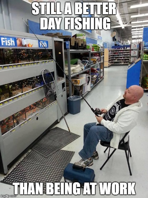 STILL A BETTER DAY FISHING THAN BEING AT WORK | image tagged in rather fish | made w/ Imgflip meme maker