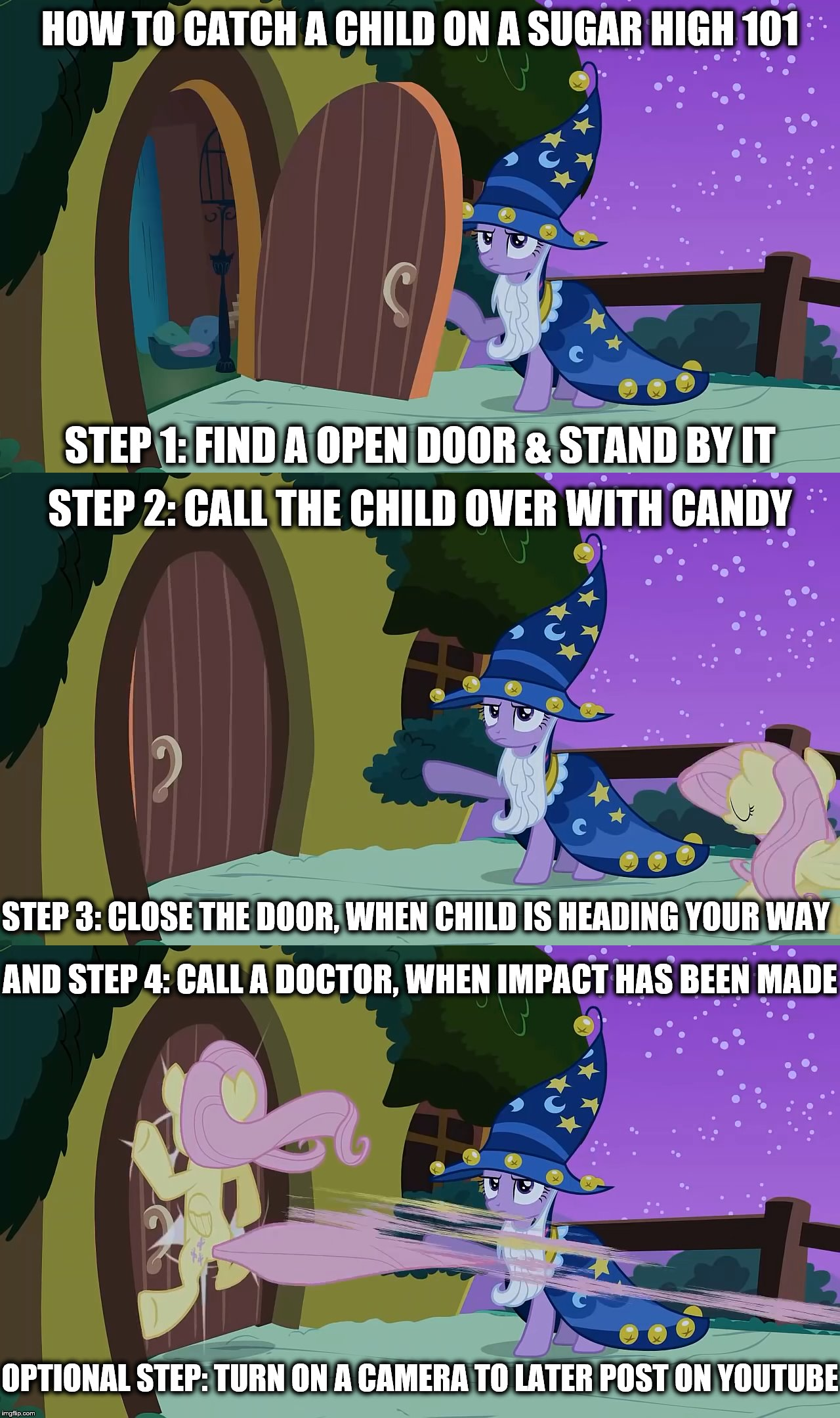 MLP Meme | HOW TO CATCH A CHILD ON A SUGAR HIGH 101 STEP 1: FIND A OPEN DOOR & STAND BY IT STEP 2: CALL THE CHILD OVER WITH CANDY STEP 3: CLOSE THE DOO | image tagged in twilight sparkle,fluttershy,my little pony friendship is magic | made w/ Imgflip meme maker