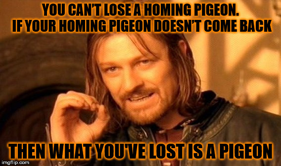 Homing pigeons | YOU CAN'T LOSE A HOMING PIGEON. IF YOUR HOMING PIGEON DOESN'T COME BACK THEN WHAT YOU'VE LOST IS A PIGEON | image tagged in memes,one does not simply,pigeon,homing pigeon,come back | made w/ Imgflip meme maker