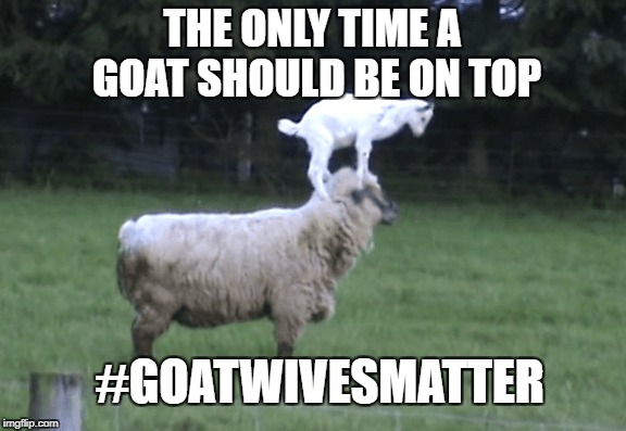 goat wives matter |  THE ONLY TIME A GOAT SHOULD BE ON TOP; #GOATWIVESMATTER | image tagged in goat,wives,matter,lives | made w/ Imgflip meme maker